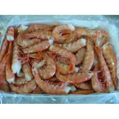 Shrimps - Argentina